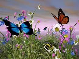 Canto la vita: vorrei essere una farfalla